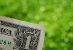 20110217life_pic1_dollarbill.jpg
