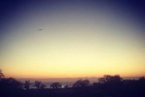 吳建豪在臉書上傳一張美麗日出的照片,「每天早上5點觀看非洲的日出是一種祝福,可以感受到平安。」(圖:吳建豪臉書) <br/>