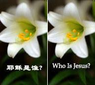 福音文宣社新印製的福音單張,主題一爲「耶穌是誰?」,一爲「真的有神嗎?」,各自配有精美圖片,向人傳播耶穌的救贖及神的愛。 <br/>