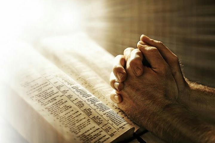 尋求生命的意義,從《聖經》可找到答案。 圖:網絡