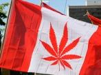 cannabis_canada.jpg