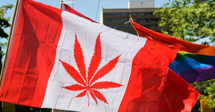 加拿大成為繼南美烏拉圭之後第二個大麻全面合法化的國家(Flickr/cannabisculture)