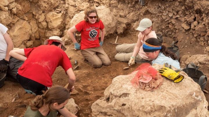 考古學家挖掘示羅古城,見證《聖經》真實性 (圖: CBN News, Jonathan Goff)