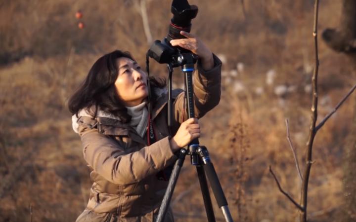 楊華雨拍攝《曠野之歌》記錄老者尋救主的故事。(圖:youtube擷圖)
