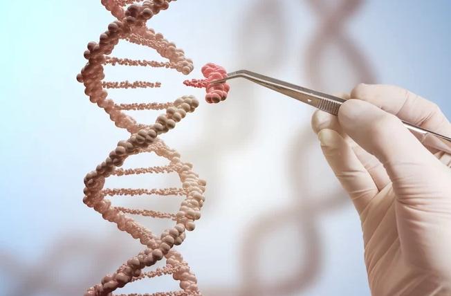 基因編輯嬰兒涉及倫理及法律問題。(圖:Live Science)