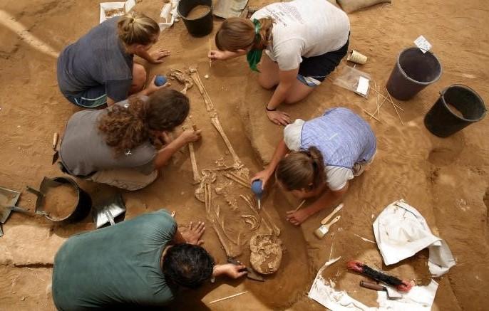 2016年6月考古學家在非利士人墓地挖掘出骷髏。(圖:CNN)