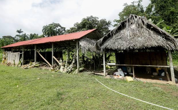 邪教組織使用的棚屋及在附近叢林發現被殺害的屍體。(圖:法新社)