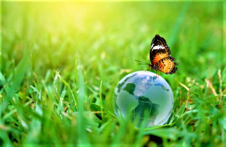 環境保育讓上帝創造的美好世界持續發展。(圖:Getty Images)