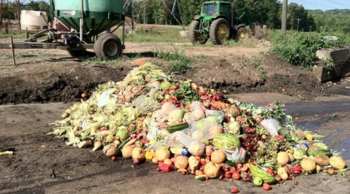 疫情下美國限制運輸,大量雞蛋、牛奶和洋蔥產品遭棄置。(圖:Eco Watch)