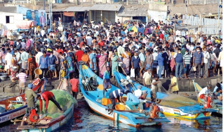 市民在清奈魚港搶購肉類。(圖:網絡圖片)