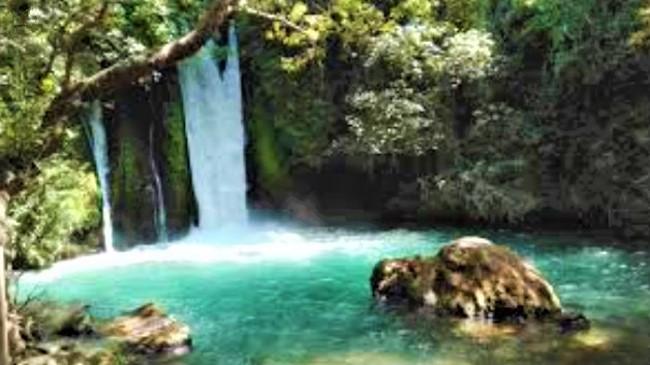 巴尼亞自然保護區瀑布。(圖:網絡圖片)