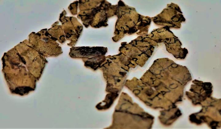 出土的聖經碎片。(圖:古物管理局)