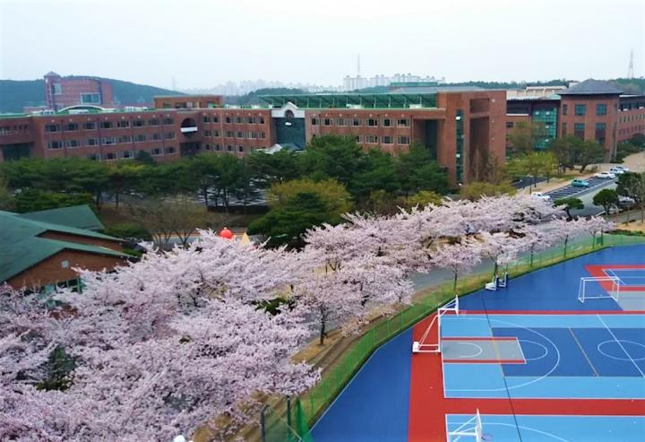 第16屆「韓國世界宣教士大會」在韓東國際大學舉行。(圖:維基百科)