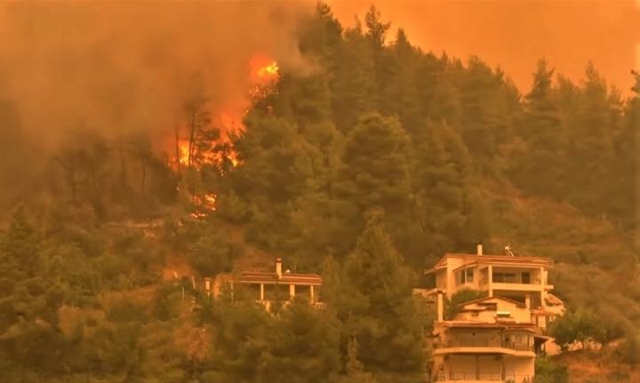 希臘埃維亞島森林大火。(圖:視頻擷圖)